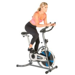 ProGear 100S Exercise Bike Indoor Training Cycle